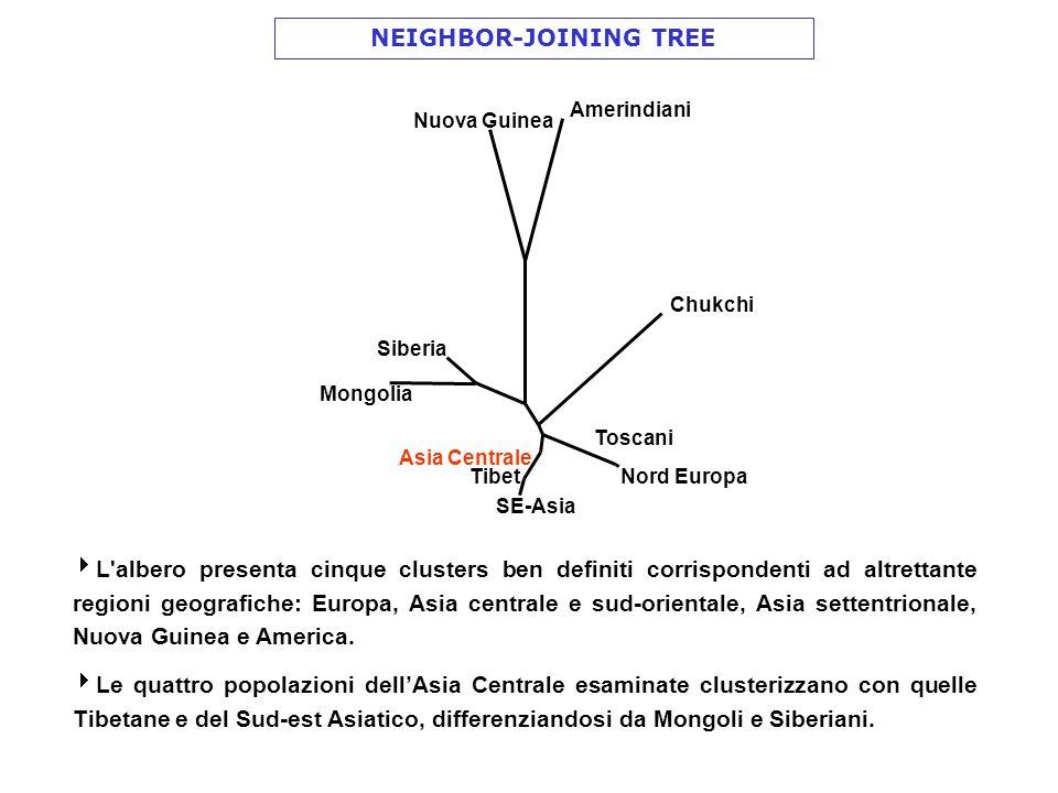 Toscani Nord Europa Asia Centrale SE-Asia Tibet Mongolia Siberia Nuova Guinea Amerindiani Chukchi NEIGHBOR-JOINING TREE L'albero presenta cinque clust