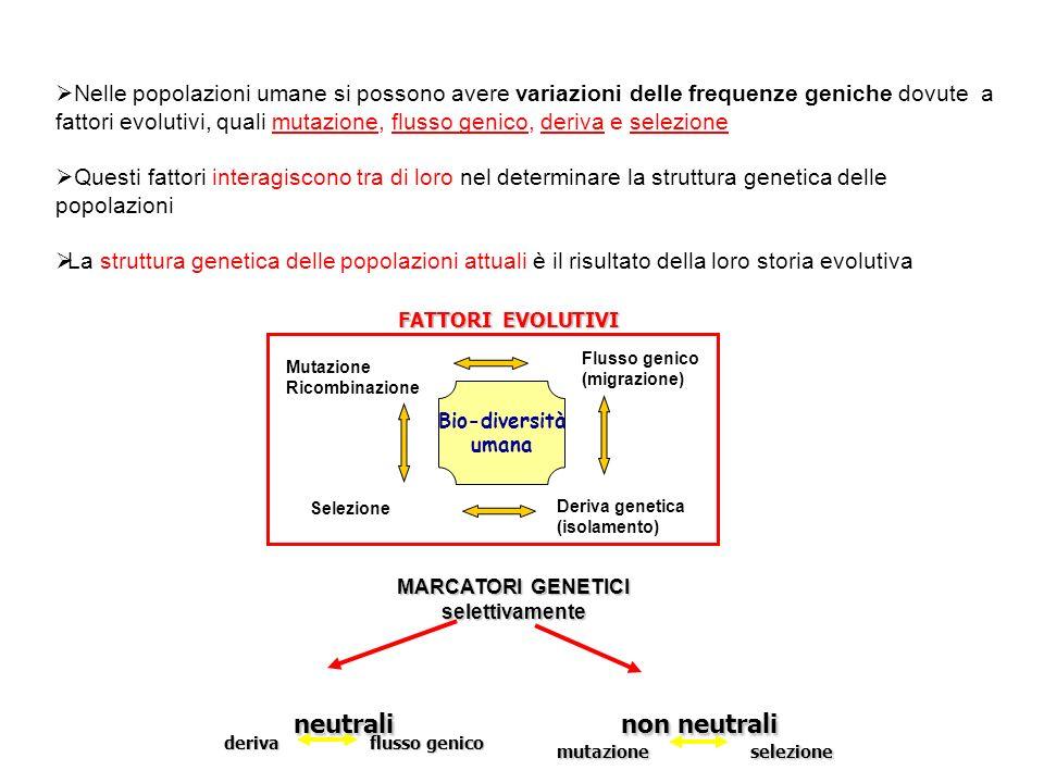 Nelle popolazioni umane si possono avere variazioni delle frequenze geniche dovute a fattori evolutivi, quali mutazione, flusso genico, deriva e selez