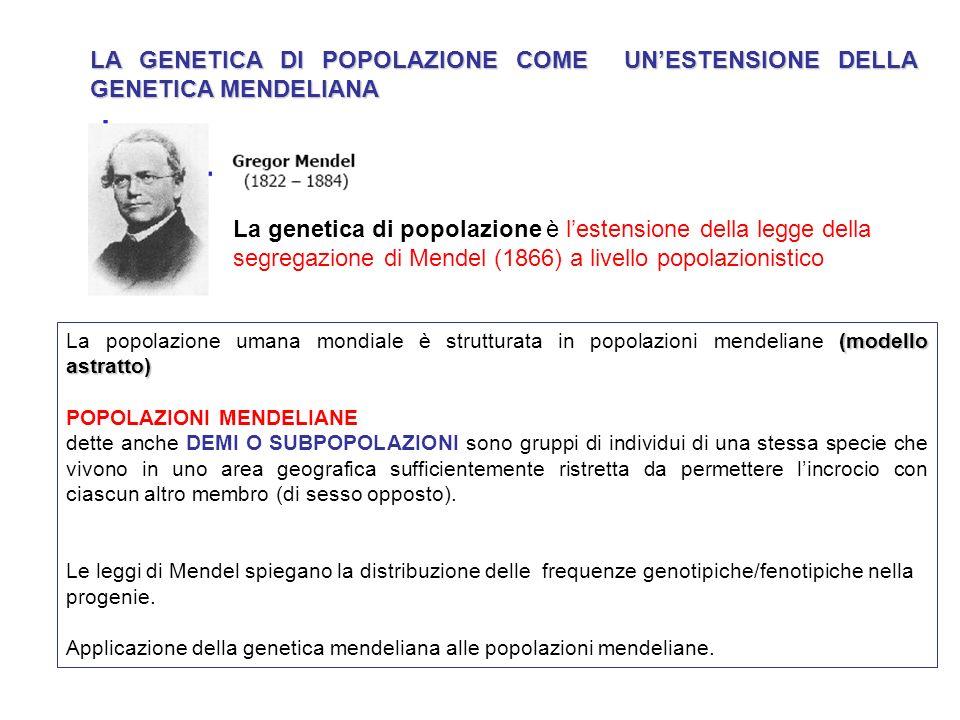 LA GENETICA DI POPOLAZIONE COME UNESTENSIONE DELLA GENETICA MENDELIANA La genetica di popolazione è lestensione della legge della segregazione di Mend