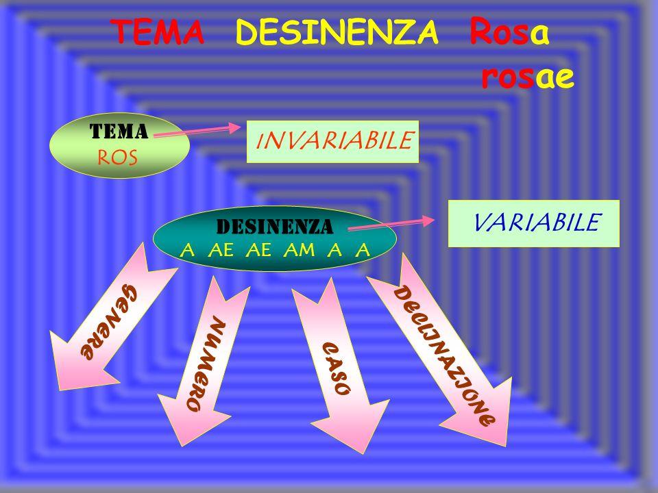 TEMA ROS DESINENZA A AE AE AM A A I NVARIABILE VARIABILE NUMERO CASO GENERE DECLINAZIONE TEMA DESINENZA Rosa rosae
