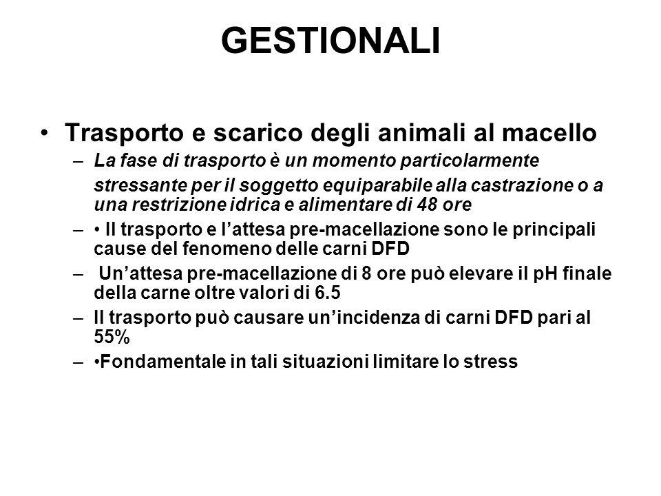 GESTIONALI Trasporto e scarico degli animali al macello –La fase di trasporto è un momento particolarmente stressante per il soggetto equiparabile all