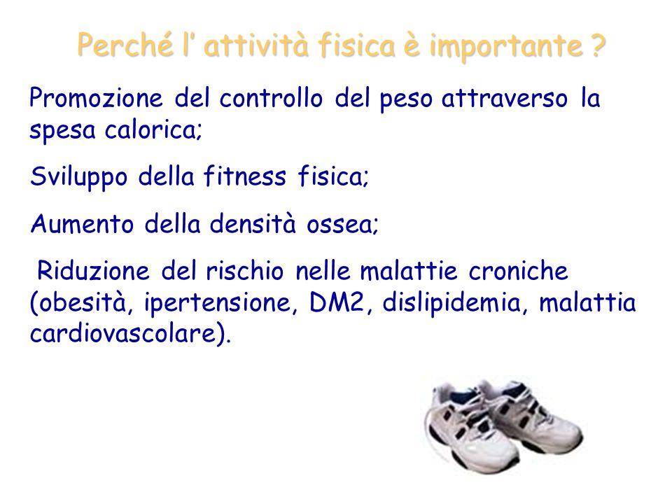 Perché l attività fisica è importante ? Promozione del controllo del peso attraverso la spesa calorica; Sviluppo della fitness fisica; Aumento della d