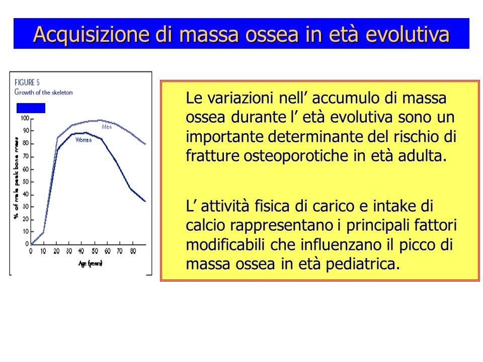 Acquisizione di massa ossea in età evolutiva Le variazioni nell accumulo di massa ossea durante l età evolutiva sono un importante determinante del ri