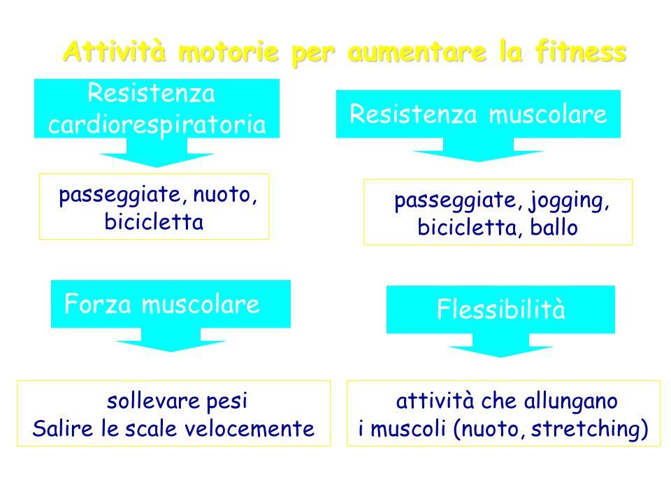 Attività motorie per aumentare la fitness attività che allungano i muscoli (nuoto, stretching) Flessibilità Resistenza muscolare passeggiate, jogging,