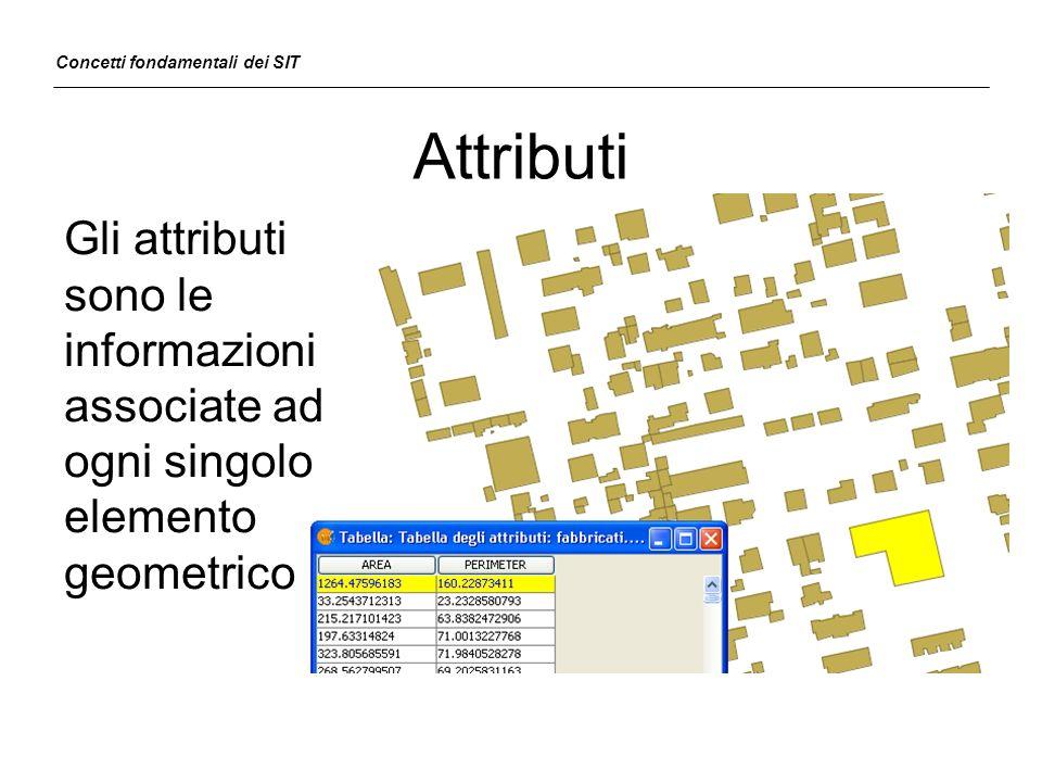 Attributi Gli attributi sono le informazioni associate ad ogni singolo elemento geometrico Concetti fondamentali dei SIT
