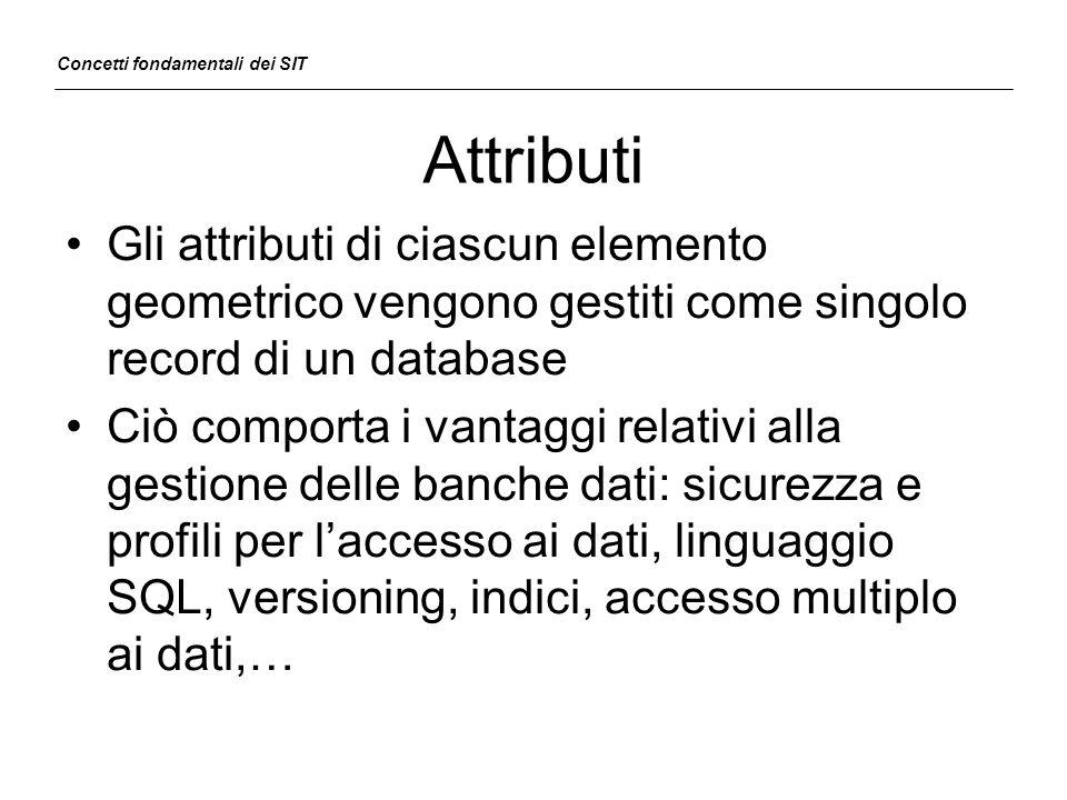 Attributi Gli attributi di ciascun elemento geometrico vengono gestiti come singolo record di un database Ciò comporta i vantaggi relativi alla gestio