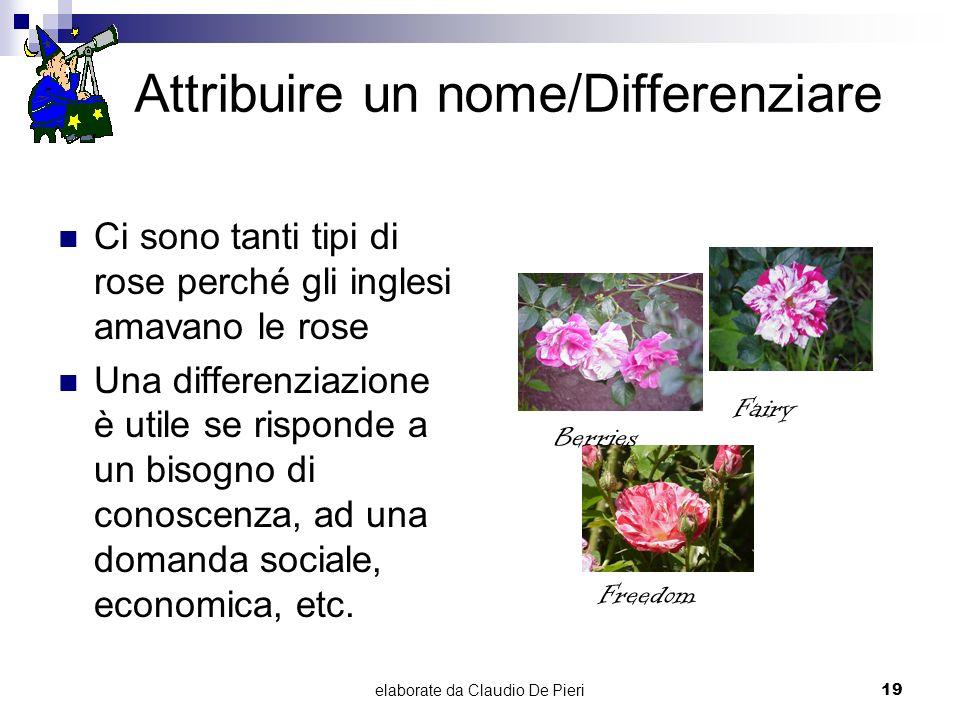 elaborate da Claudio De Pieri19 Attribuire un nome/Differenziare Ci sono tanti tipi di rose perché gli inglesi amavano le rose Una differenziazione è