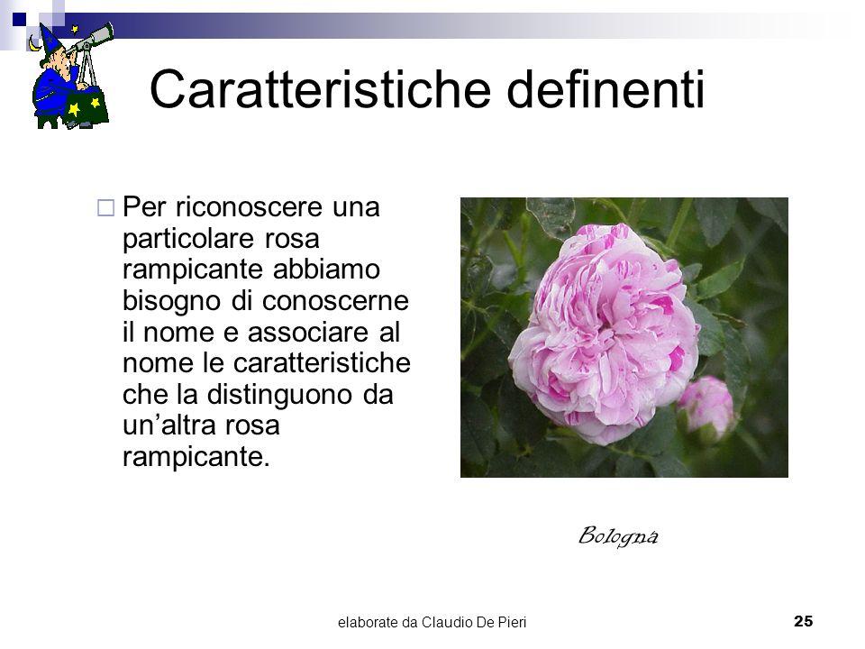 elaborate da Claudio De Pieri25 Caratteristiche definenti Per riconoscere una particolare rosa rampicante abbiamo bisogno di conoscerne il nome e asso