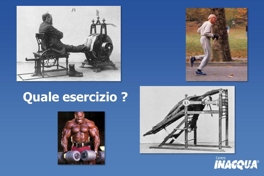 Quale esercizio ?