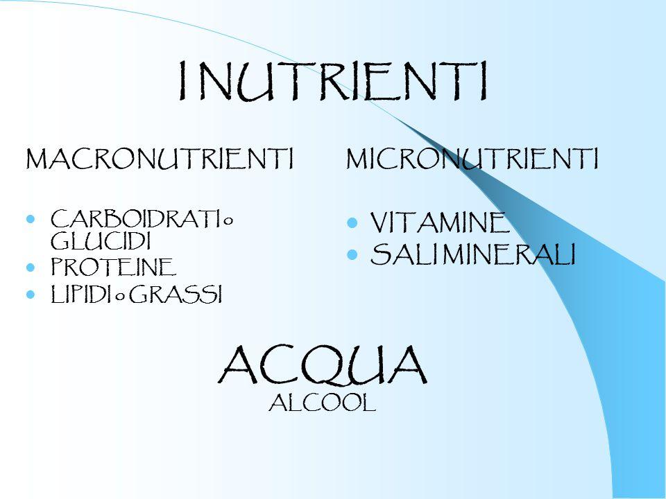 I NUTRIENTI MACRONUTRIENTI CARBOIDRATI o GLUCIDI PROTEINE LIPIDI o GRASSI MICRONUTRIENTI VITAMINE SALI MINERALI ACQUA ALCOOL