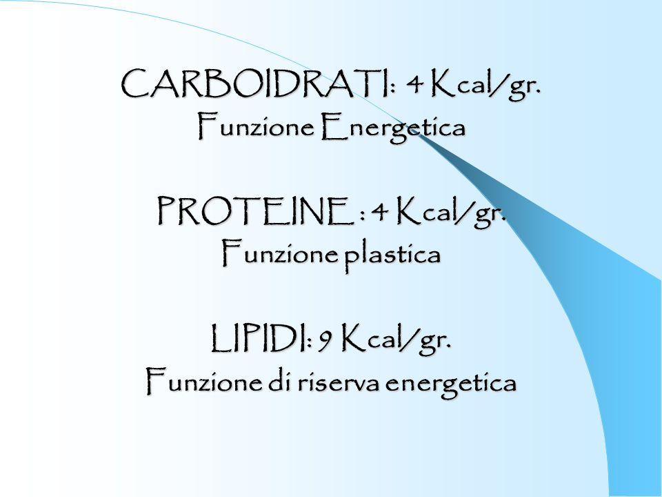 CARBOIDRATI: 4 Kcal/gr. Funzione Energetica PROTEINE : 4 Kcal/gr. Funzione plastica LIPIDI: 9 Kcal/gr. Funzione di riserva energetica