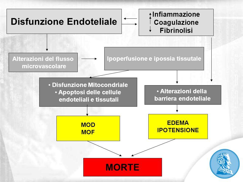 Alterazioni del flusso microvascolare Disfunzione Mitocondriale Apoptosi delle cellule endoteliali e tissutali MOD MOF Ipoperfusione e ipossia tissuta