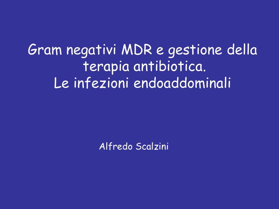 Gram negativi MDR e gestione della terapia antibiotica.