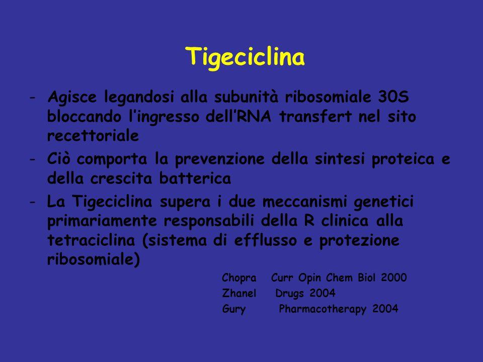 Tigeciclina -Agisce legandosi alla subunità ribosomiale 30S bloccando lingresso dellRNA transfert nel sito recettoriale -Ciò comporta la prevenzione della sintesi proteica e della crescita batterica -La Tigeciclina supera i due meccanismi genetici primariamente responsabili della R clinica alla tetraciclina (sistema di efflusso e protezione ribosomiale) Chopra Curr Opin Chem Biol 2000 Zhanel Drugs 2004 Gury Pharmacotherapy 2004