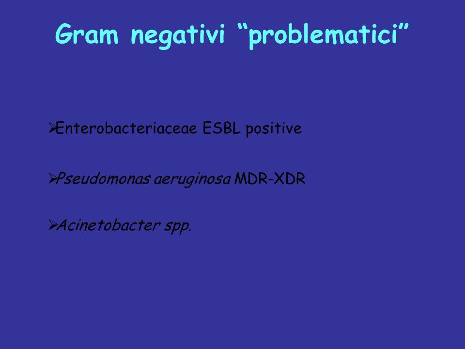 Gram negativi problematici Enterobacteriaceae ESBL positive Pseudomonas aeruginosa MDR-XDR Acinetobacter spp.