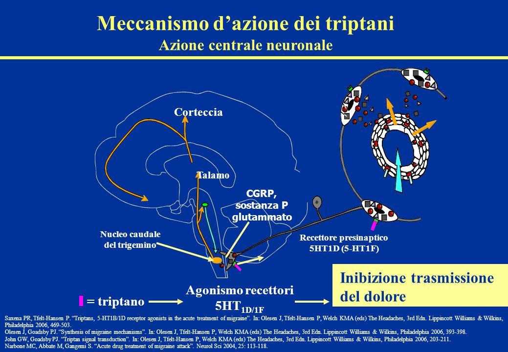 Talamo Nucleo caudale del trigemino Recettore presinaptico 5HT1D (5-HT1F) Corteccia CGRP, sostanza P glutammato Inibizione trasmissione del dolore = t