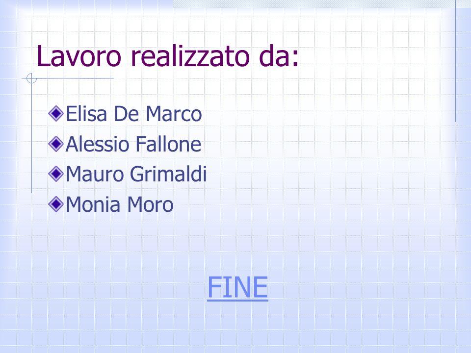 Lavoro realizzato da: Elisa De Marco Alessio Fallone Mauro Grimaldi Monia Moro FINE