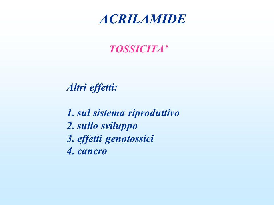 TOSSICITA Altri effetti: 1. sul sistema riproduttivo 2. sullo sviluppo 3. effetti genotossici 4. cancro ACRILAMIDE