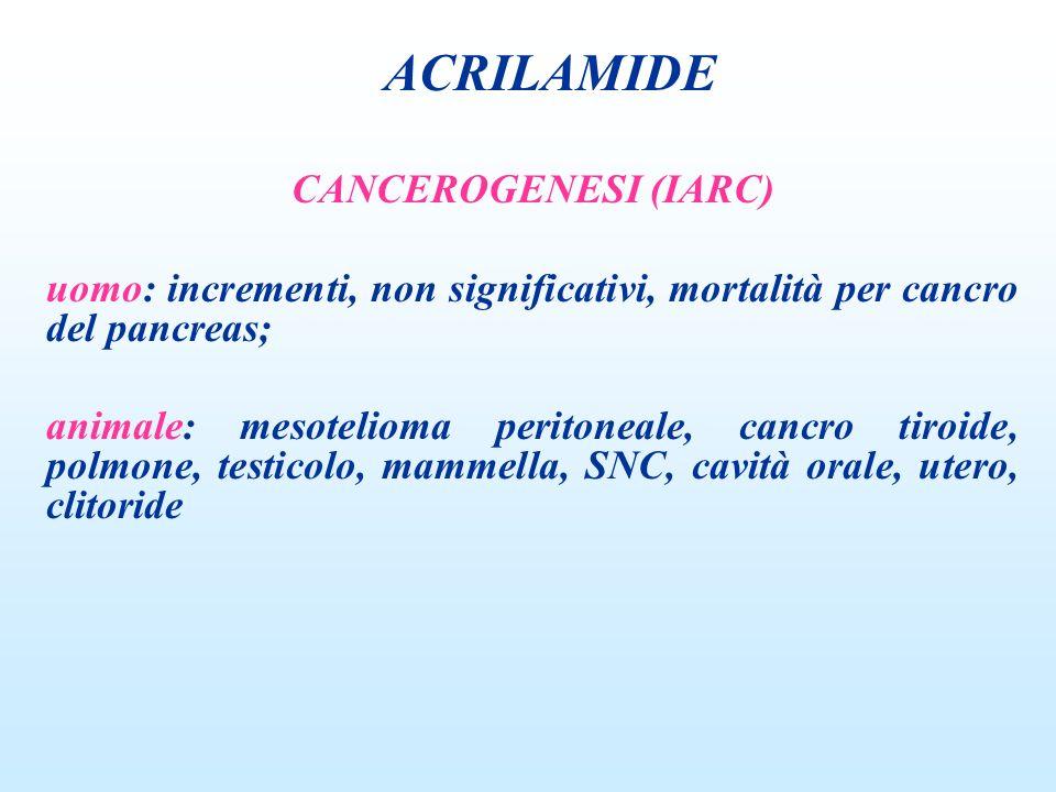 CANCEROGENESI (IARC) uomo: incrementi, non significativi, mortalità per cancro del pancreas; animale: mesotelioma peritoneale, cancro tiroide, polmone