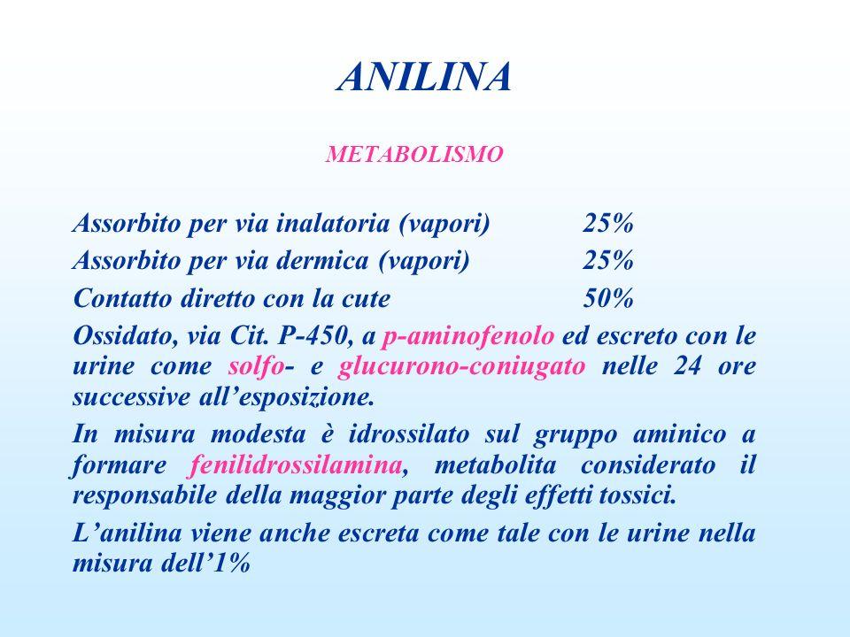 METABOLISMO Assorbito per via inalatoria (vapori)25% Assorbito per via dermica (vapori)25% Contatto diretto con la cute50% Ossidato, via Cit. P-450, a