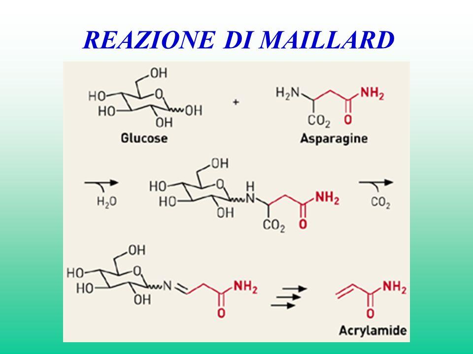 METABOLISMO Metabolizzato dal fegato via ossidazione microsomiale a GLICIDAMIDE.