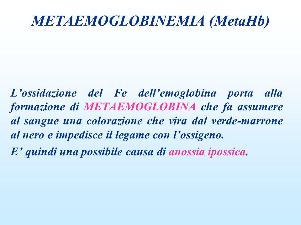 Lossidazione del Fe dellemoglobina porta alla formazione di METAEMOGLOBINA che fa assumere al sangue una colorazione che vira dal verde-marrone al ner