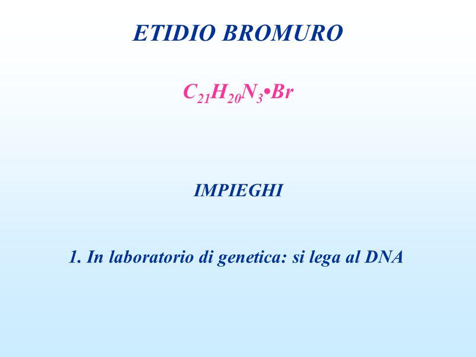 ETIDIO BROMURO IMPIEGHI 1. In laboratorio di genetica: si lega al DNA C 21 H 20 N 3 Br