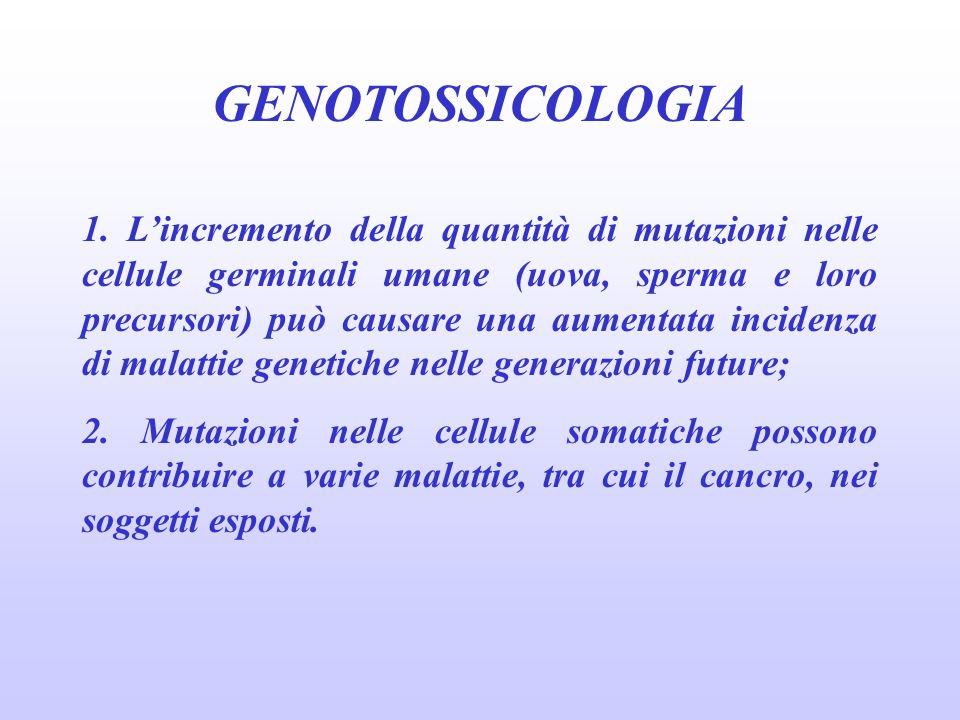 GENOTOSSICOLOGIA 1. Lincremento della quantità di mutazioni nelle cellule germinali umane (uova, sperma e loro precursori) può causare una aumentata i