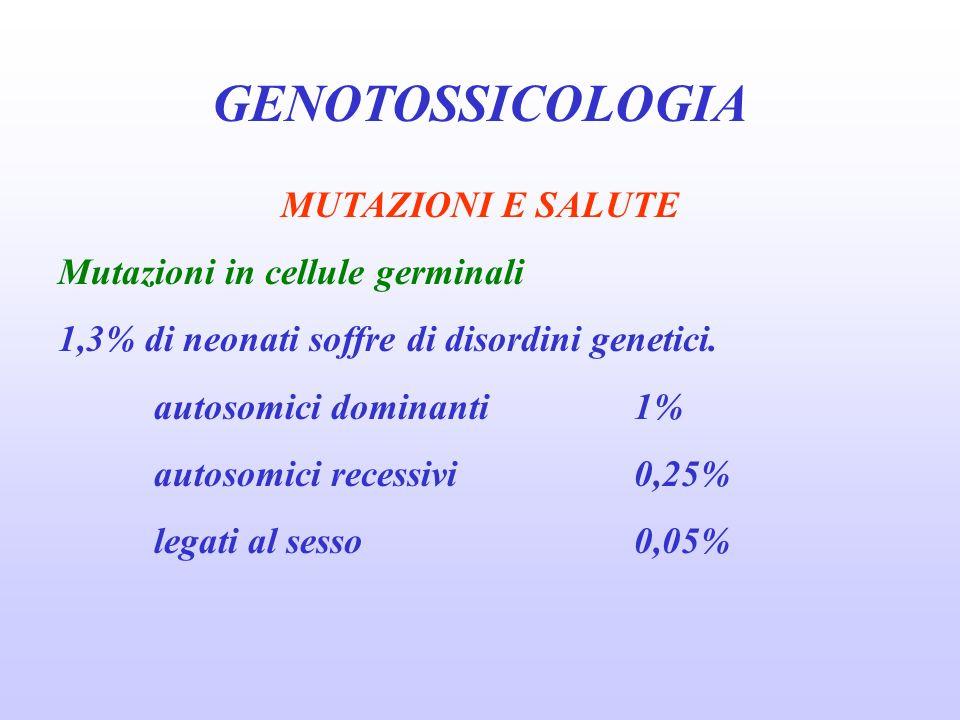 GENOTOSSICOLOGIA MUTAZIONI E SALUTE Mutazioni in cellule germinali 1,3% di neonati soffre di disordini genetici. autosomici dominanti1% autosomici rec