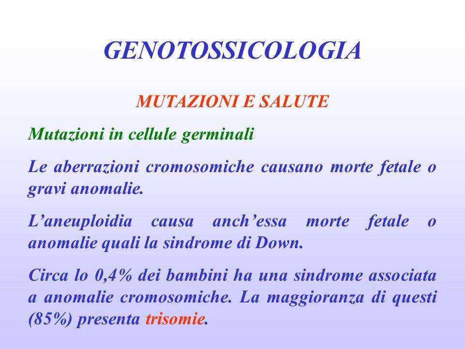 GENOTOSSICOLOGIA MUTAZIONI E SALUTE Mutazioni in cellule germinali Le aberrazioni cromosomiche causano morte fetale o gravi anomalie. Laneuploidia cau