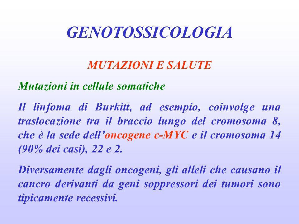 GENOTOSSICOLOGIA MUTAZIONI E SALUTE Mutazioni in cellule somatiche Il linfoma di Burkitt, ad esempio, coinvolge una traslocazione tra il braccio lungo