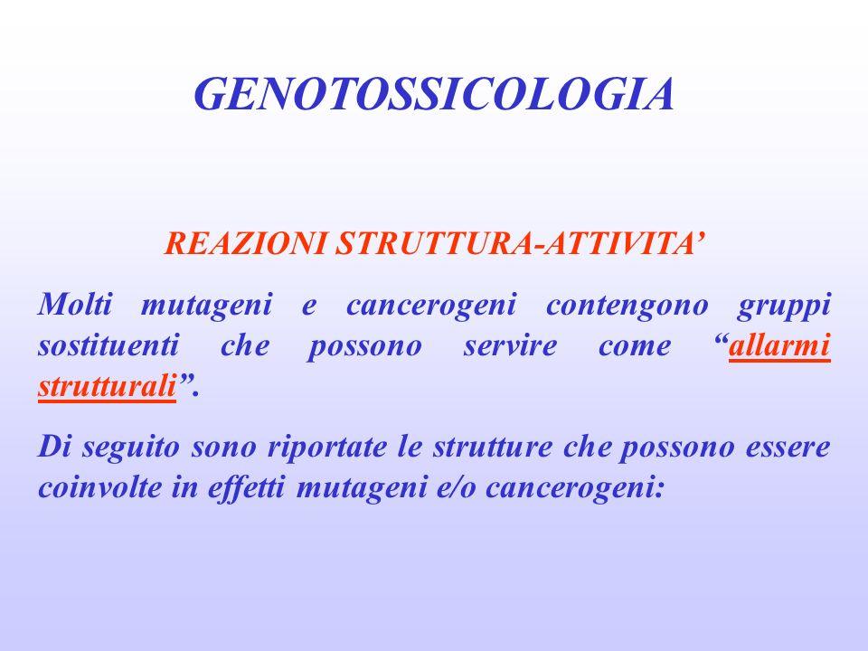 GENOTOSSICOLOGIA REAZIONI STRUTTURA-ATTIVITA Molti mutageni e cancerogeni contengono gruppi sostituenti che possono servire come allarmi strutturali.