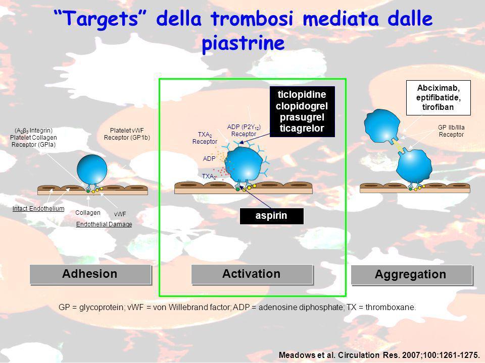 Adhesion Activation Aggregation Meadows et al.Circulation Res.