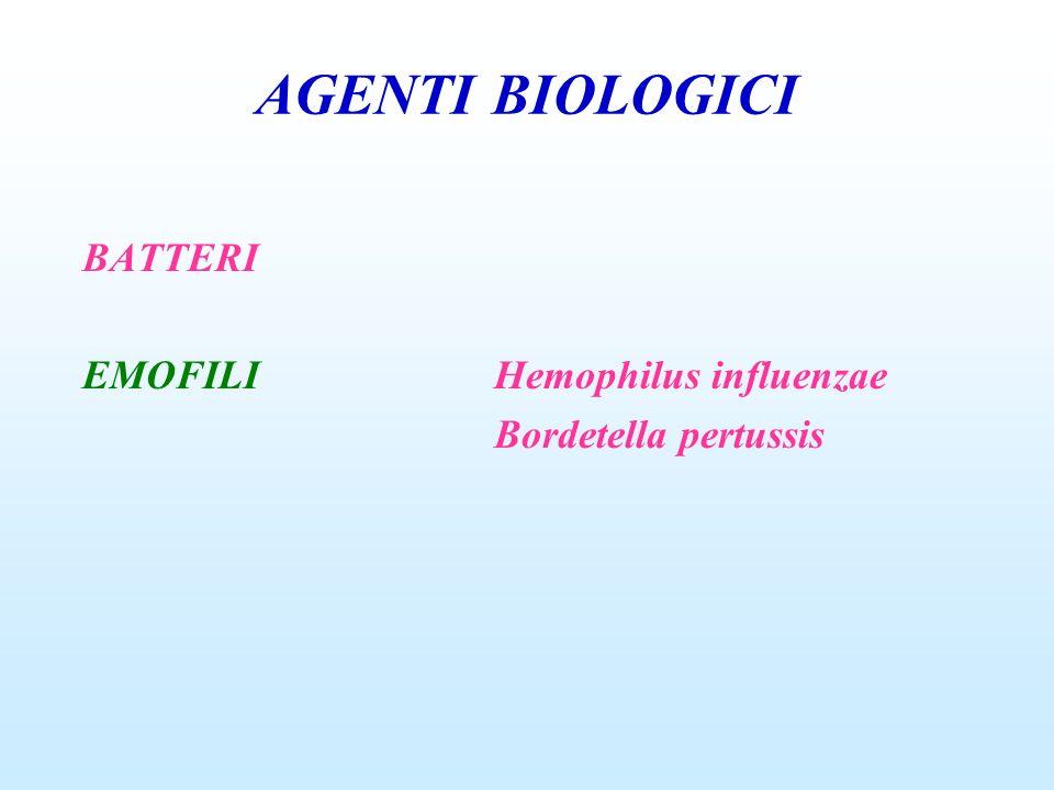 AGENTI BIOLOGICI BATTERI EMOFILIHemophilus influenzae Bordetella pertussis