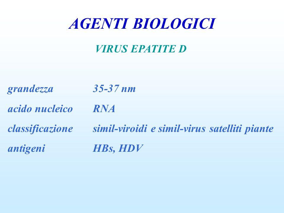 AGENTI BIOLOGICI VIRUS EPATITE D grandezza35-37 nm acido nucleicoRNA classificazionesimil-viroidi e simil-virus satelliti piante antigeniHBs, HDV