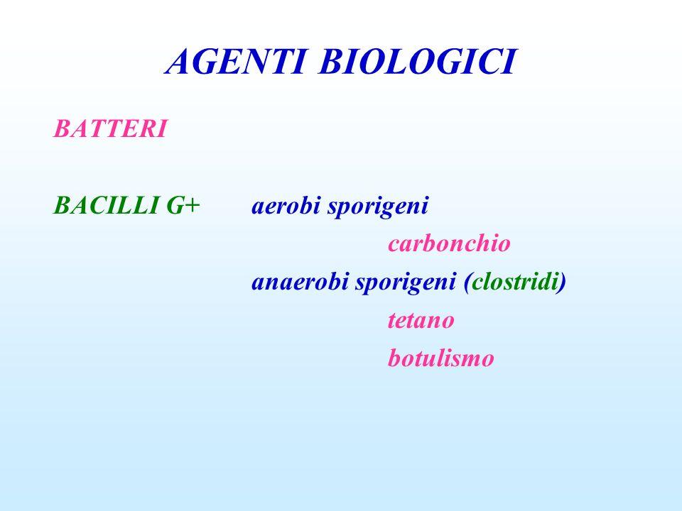AGENTI BIOLOGICI BATTERI BACILLI G+aerobi sporigeni carbonchio anaerobi sporigeni (clostridi) tetano botulismo