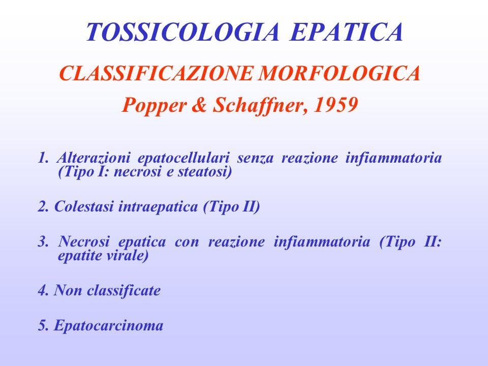 CLASSIFICAZIONE MORFOLOGICA Popper & Schaffner, 1959 1. Alterazioni epatocellulari senza reazione infiammatoria (Tipo I: necrosi e steatosi) 2. Colest