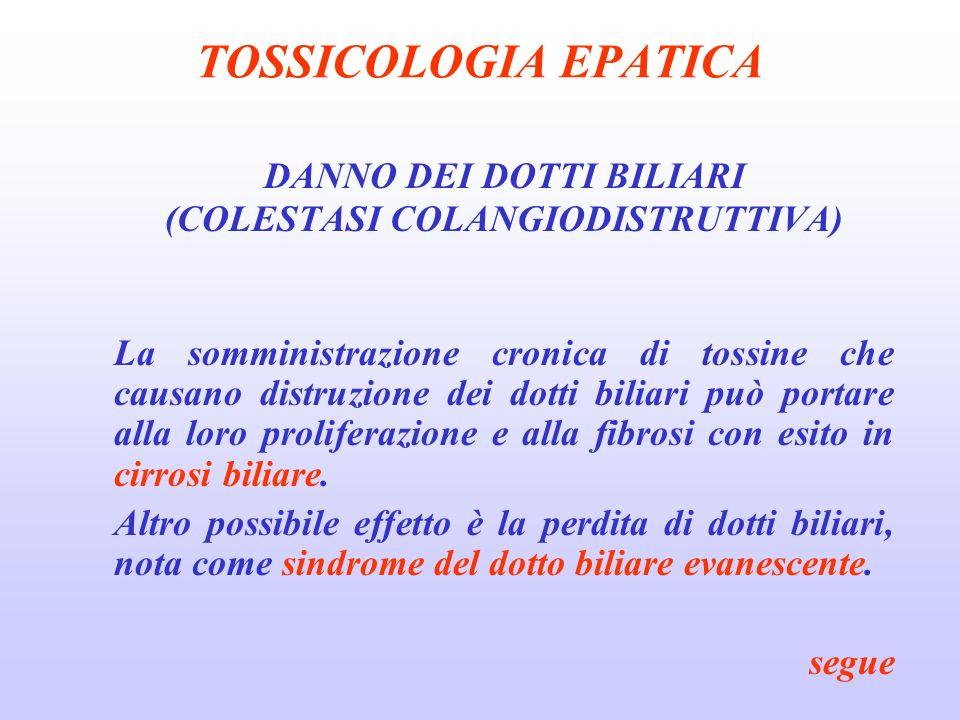TOSSICOLOGIA EPATICA DANNO DEI DOTTI BILIARI (COLESTASI COLANGIODISTRUTTIVA) La somministrazione cronica di tossine che causano distruzione dei dotti