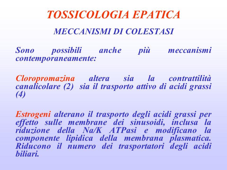 TOSSICOLOGIA EPATICA MECCANISMI DI COLESTASI Sono possibili anche più meccanismi contemporaneamente: Cloropromazina altera sia la contrattilità canali