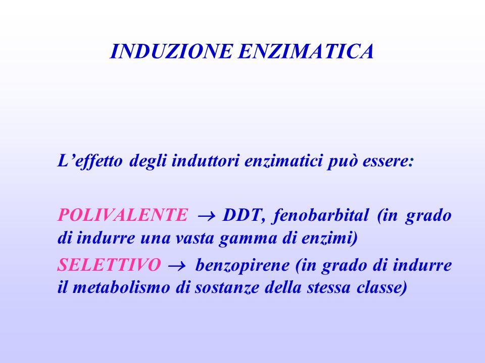 INDUZIONE ENZIMATICA Leffetto degli induttori enzimatici può essere: POLIVALENTE DDT, fenobarbital (in grado di indurre una vasta gamma di enzimi) SEL