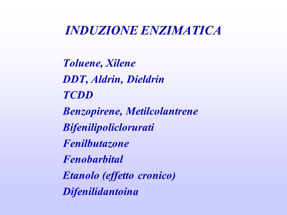 INDUZIONE ENZIMATICA Toluene, Xilene DDT, Aldrin, Dieldrin TCDD Benzopirene, Metilcolantrene Bifenilipoliclorurati Fenilbutazone Fenobarbital Etanolo