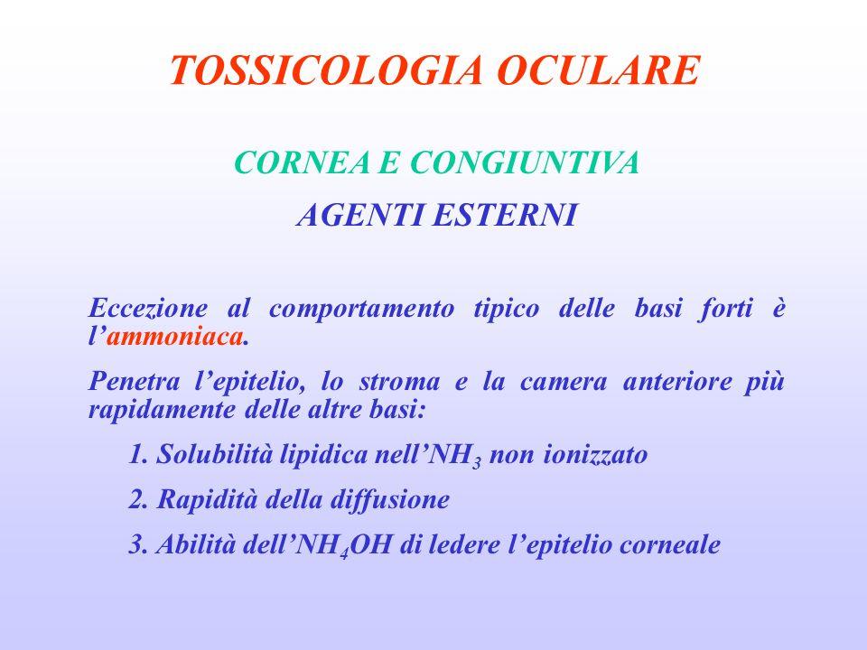 TOSSICOLOGIA OCULARE CORNEA E CONGIUNTIVA AGENTI ESTERNI Eccezione al comportamento tipico delle basi forti è lammoniaca.