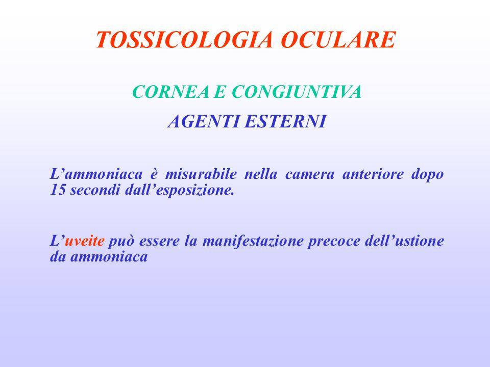 TOSSICOLOGIA OCULARE CORNEA E CONGIUNTIVA AGENTI ESTERNI Lammoniaca è misurabile nella camera anteriore dopo 15 secondi dallesposizione.