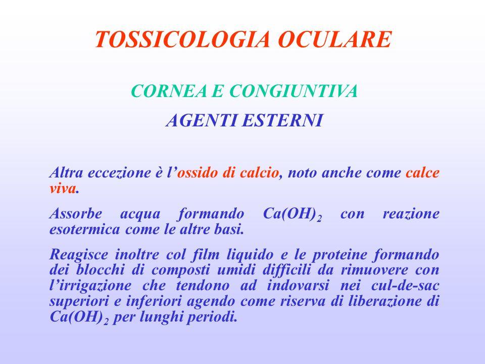TOSSICOLOGIA OCULARE CORNEA E CONGIUNTIVA AGENTI ESTERNI Altra eccezione è lossido di calcio, noto anche come calce viva.