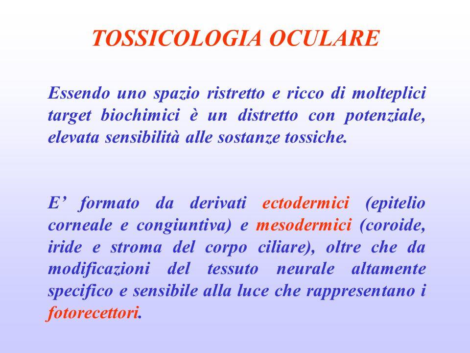 TOSSICOLOGIA OCULARE Essendo uno spazio ristretto e ricco di molteplici target biochimici è un distretto con potenziale, elevata sensibilità alle sostanze tossiche.