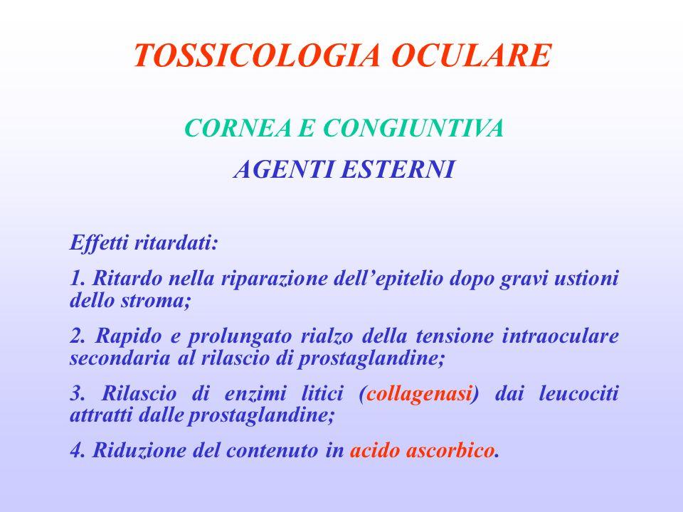 TOSSICOLOGIA OCULARE CORNEA E CONGIUNTIVA AGENTI ESTERNI Effetti ritardati: 1.