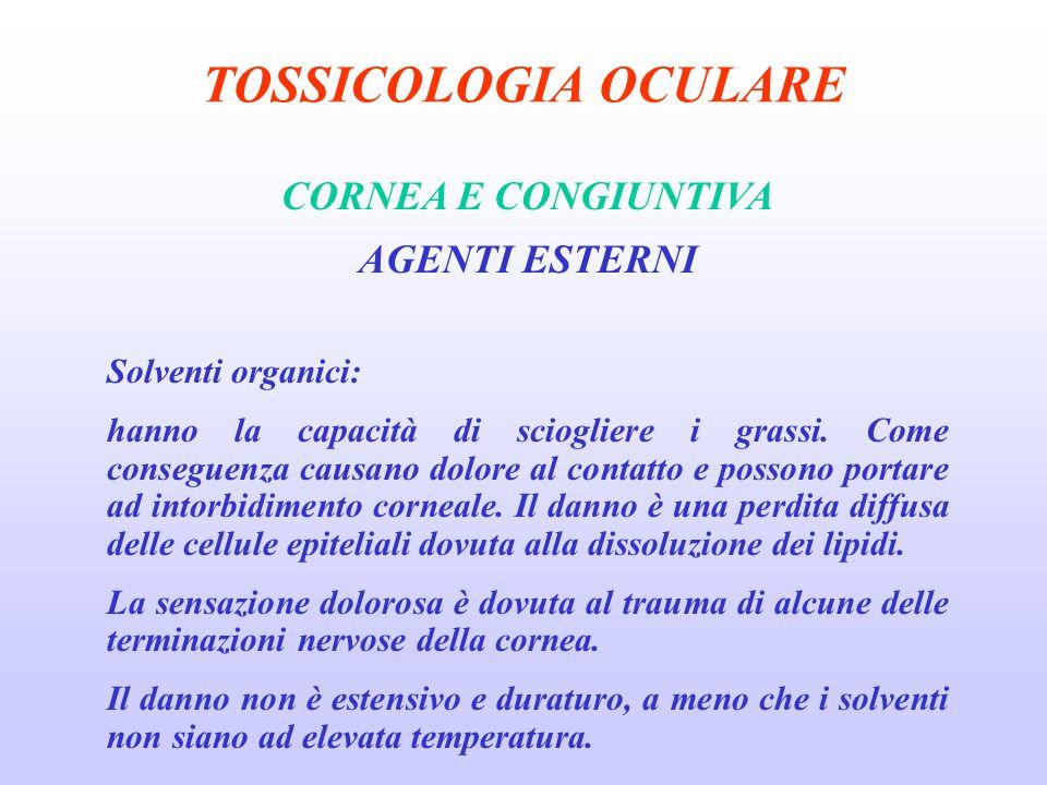 TOSSICOLOGIA OCULARE CORNEA E CONGIUNTIVA AGENTI ESTERNI Solventi organici: hanno la capacità di sciogliere i grassi.