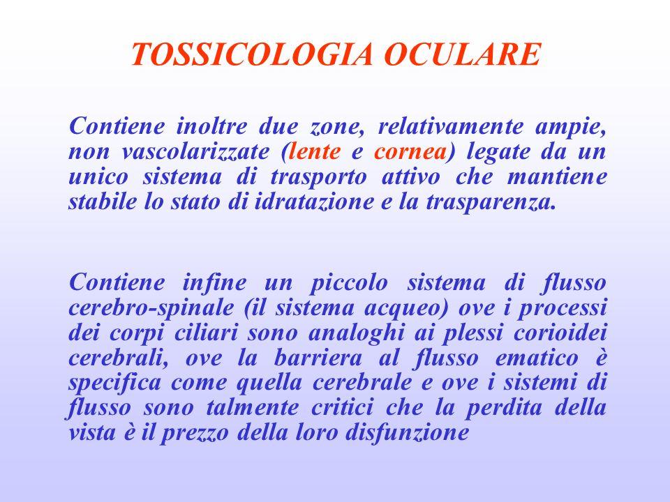 TOSSICOLOGIA OCULARE Contiene inoltre due zone, relativamente ampie, non vascolarizzate (lente e cornea) legate da un unico sistema di trasporto attivo che mantiene stabile lo stato di idratazione e la trasparenza.