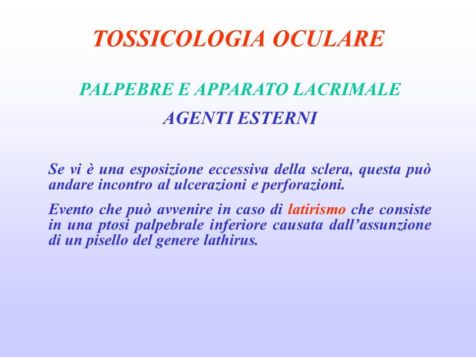 TOSSICOLOGIA OCULARE PALPEBRE E APPARATO LACRIMALE AGENTI ESTERNI Se vi è una esposizione eccessiva della sclera, questa può andare incontro al ulcerazioni e perforazioni.