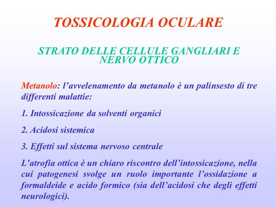 TOSSICOLOGIA OCULARE STRATO DELLE CELLULE GANGLIARI E NERVO OTTICO Metanolo: lavvelenamento da metanolo è un palinsesto di tre differenti malattie: 1.